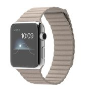 Apple Watch 42mm Stainless Steel Case with Stone Leather Loop